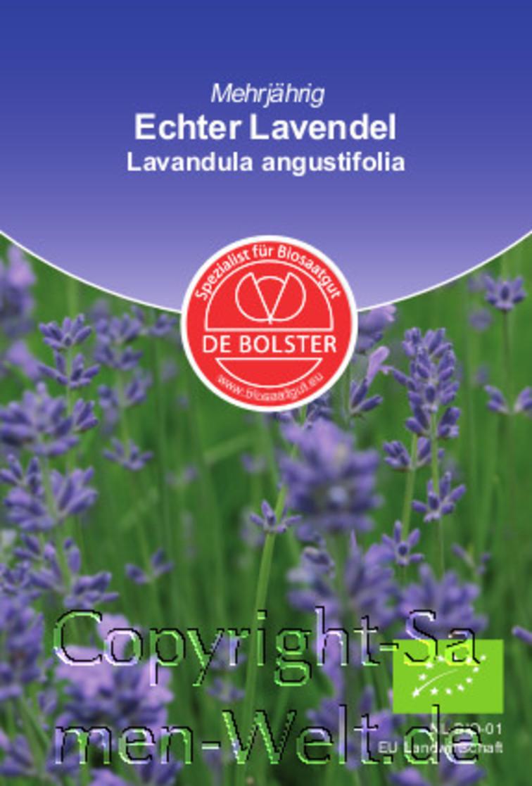 bio samen echter lavendel lavandula angustifolia de. Black Bedroom Furniture Sets. Home Design Ideas